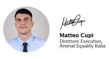 matteo cupi direttore esecutivo animal equality italia