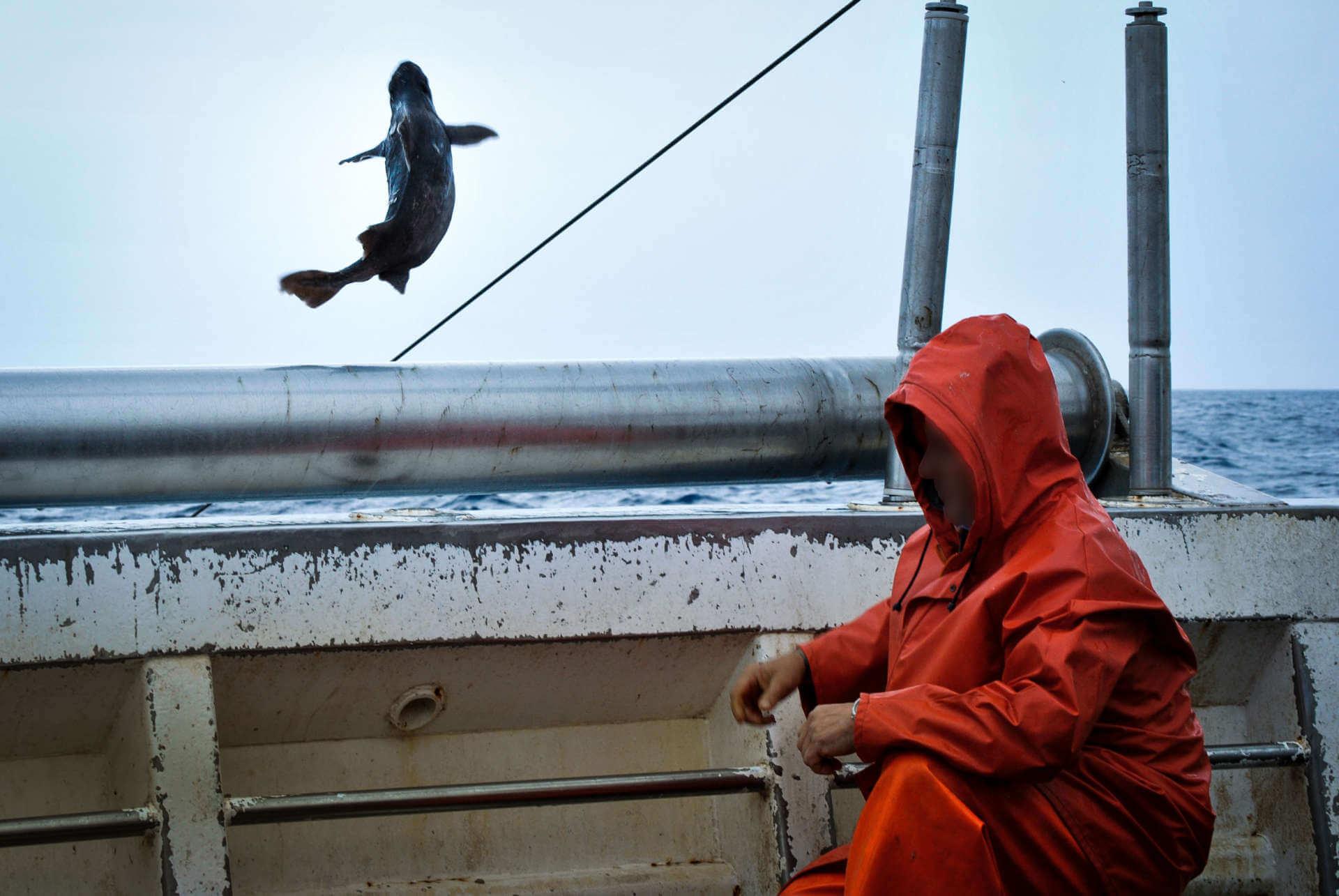 pescatore lancia pesce in mare