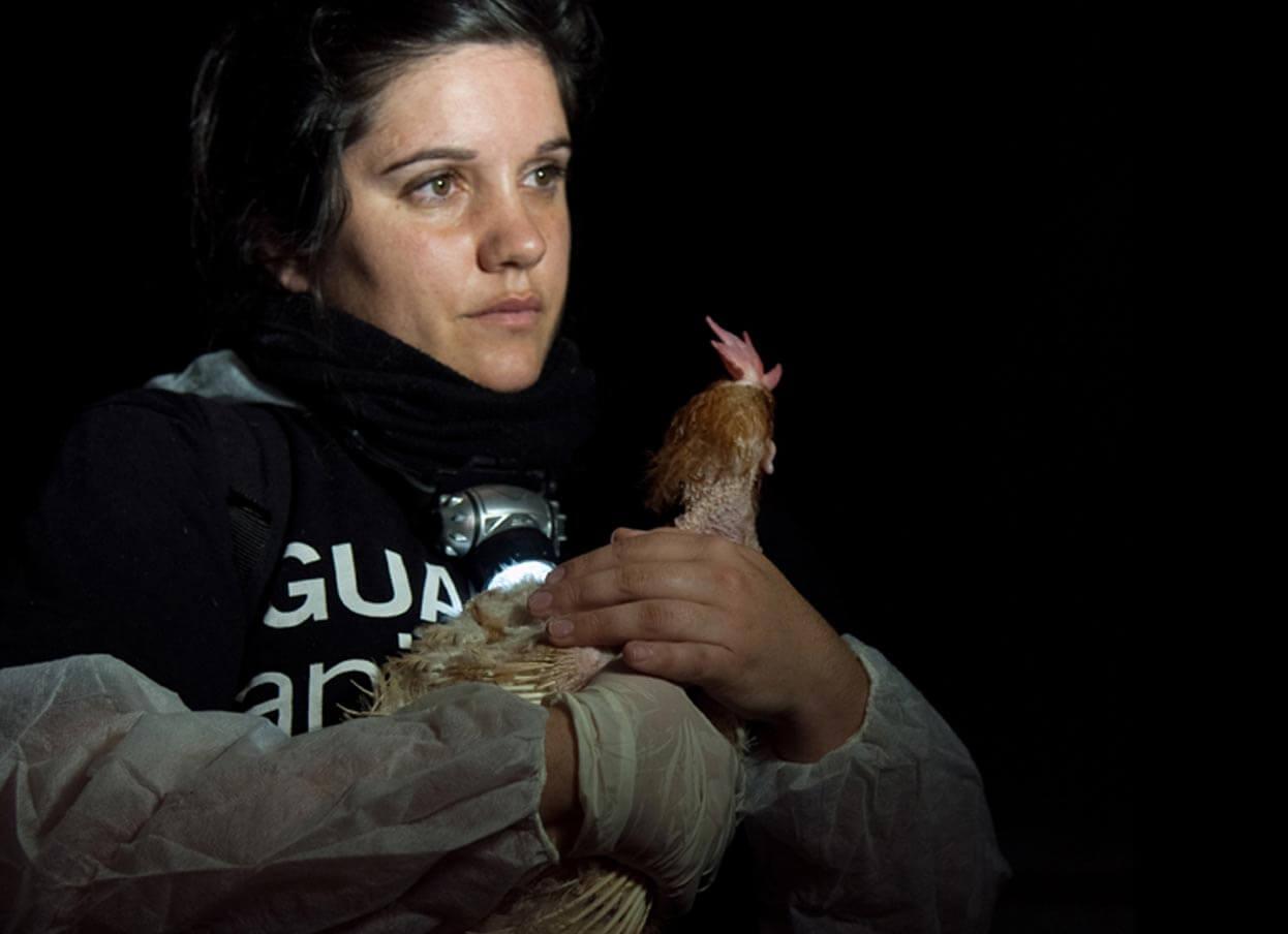 Sharon Nunez, Animal Equality, donazione animali